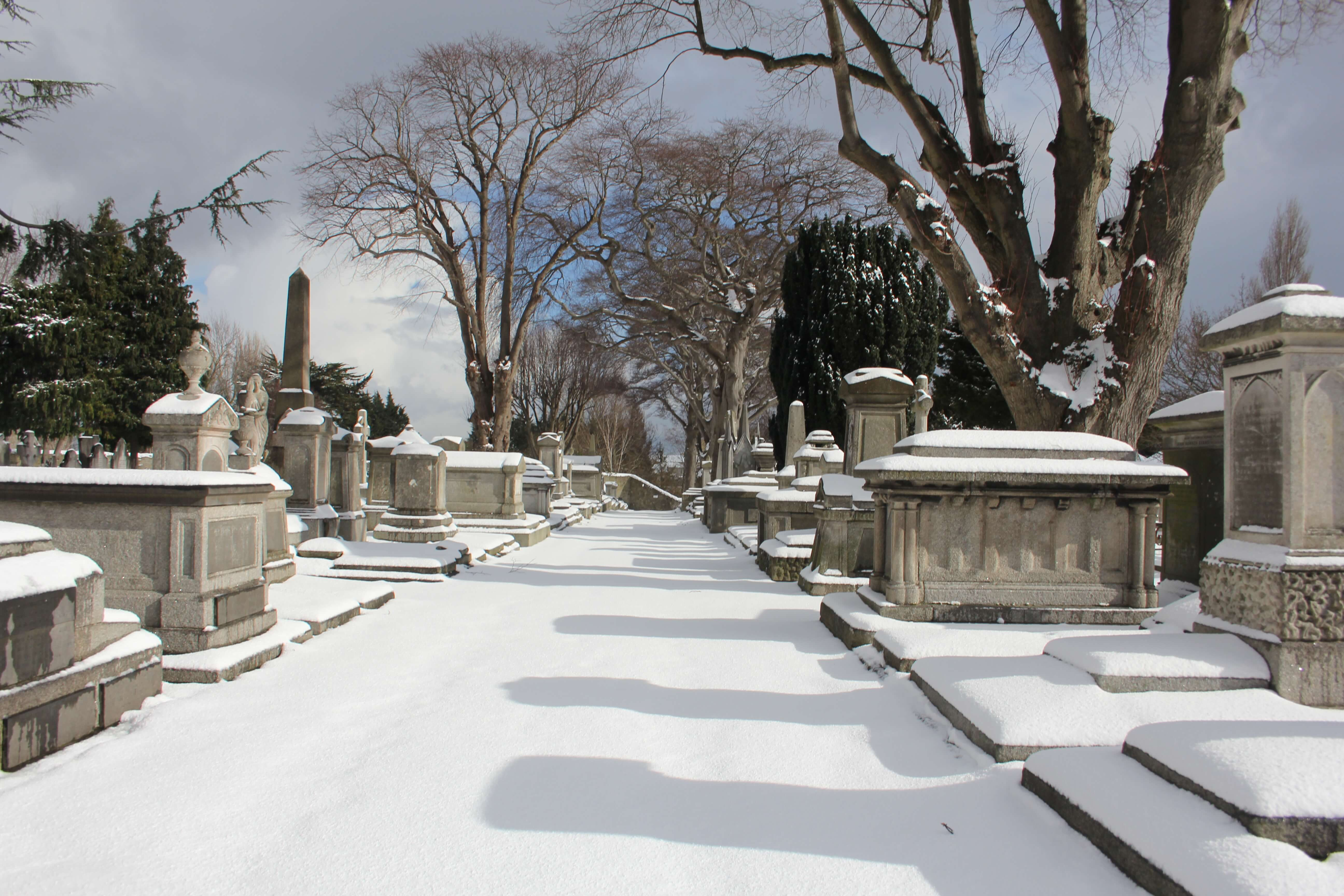 Mount Jerome cemetery in Dublin during storm Emma